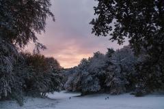 Early Snow in Blankenese