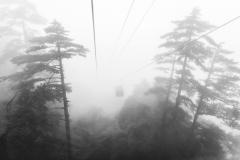 Huangshan in the Fog